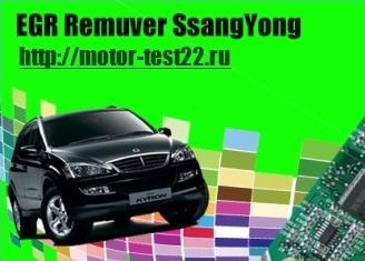 EGR Remuver SsangYong